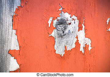 wood knot with peeling paint - closeup wood knot on the...