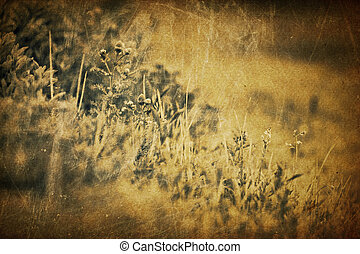 Spring grass vintage