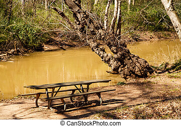 Old Picnic Table by Muddy River - An old wooden picnic table...
