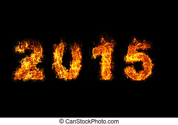 Year 2015 on fire