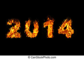 Year 2014 on fire