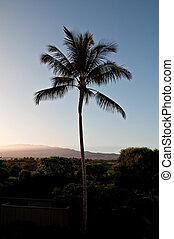 Hawaiian Sunrise with Vog