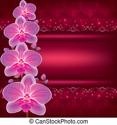 Greeting or invitation card with flower orchid vector