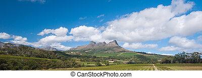 ziemie, miasto, Okolica,  Stellenbosch, przylądek, Wino