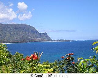 Bali Hi is calling - Bali Hi in Kauai Hawaii