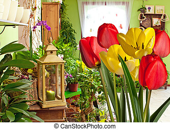 tulips in flower shop
