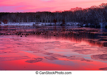 Rock Cut State Park Sunset - Flock of geese under vivid...