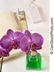 orchid in the bathroom