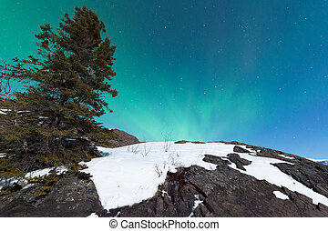 Northern Lights Aurora borealis over snowy rocks - Northern...