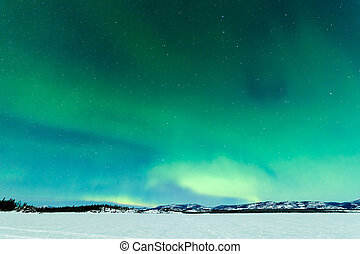 Northern Lights over moon lit frozen Lake Laberge - Intense...