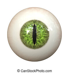 eye texture - An image of a nice green cat eye texture