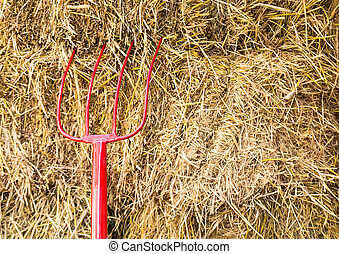 Pitchfork sit in a pile of Straw stacked awaiting the...
