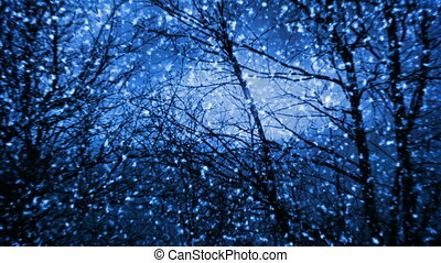 Night snowfall in forest seamless loop