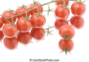 Red tomato on white macro