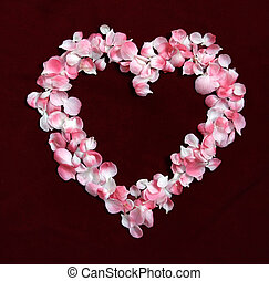 Flower Petals forming a heart shape