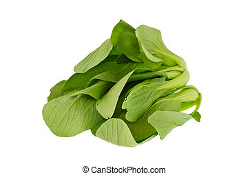 Cabbage Cantonese isolated on white background