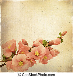 Vintage floral background with pink flowers on a brown...