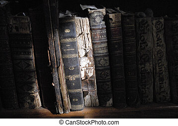 detail of very old library books