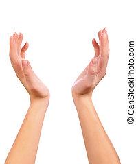entre, deux, mains