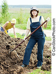 Women scatters the manure pitchfork in the field