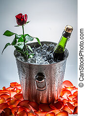 Rose in ice cold with bottle of champagne