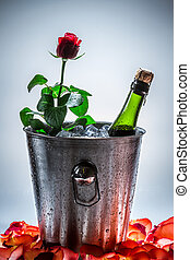 Red rose and cold champagne