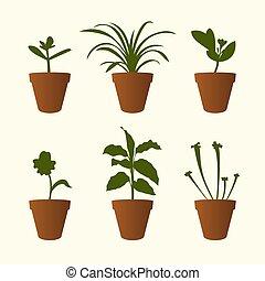 Set of plants in the flowerpots