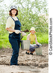 gardeners fertilizes  soil in garden