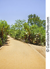 Tropical red gravel drive road path