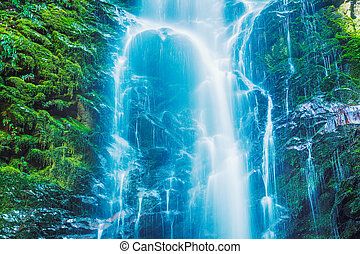 Beautiful Waterfall - Beautiful Waterfall, Lush Waterfall in...