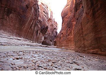 Paria River, Utah - Beautiful sandstone canyon walls rise up...