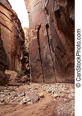 Buckskin Gulch - Beautiful sandstone wall of Buckskin Gulch,...