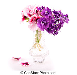 violet and geranium flowers isolated on white background