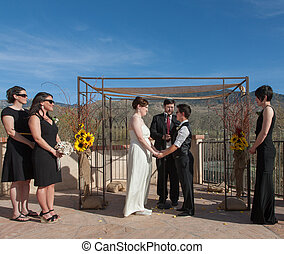 Committed Gay Couple in Ceremony - Committed young lesbian...