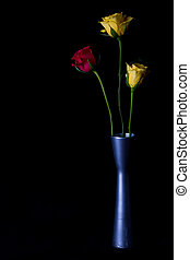 Yellow and red roses in vase silver on black background