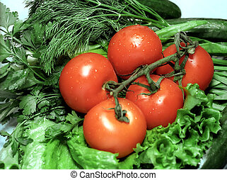 Red tomatoes on greenery background