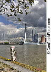 Erasmus Bridge in Rotterdam