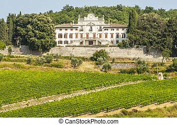 Radda in Chianti - Ancient palace and vineyards - Radda in...