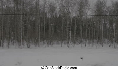 Image of winter forest from moving train, close-up