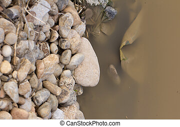 stones near the dirty river in nature