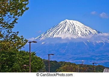 Mt Fuji view  - Mt Fuji view