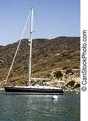 Sailboat Moored at Catalina Harbor