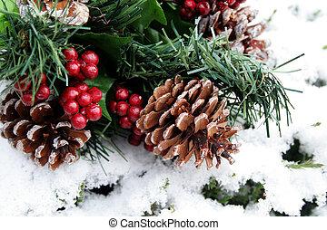 Pine Cones In Snow - Pine cones and berries on fresh fallen...