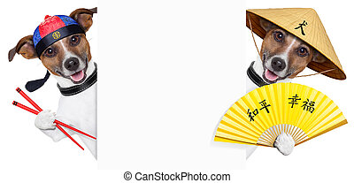 asian dogs - two asian dogs with chopsticks and asia hat...