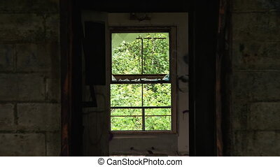 Window Hallway and Open Flooded Room - Pullback reverse zoom...