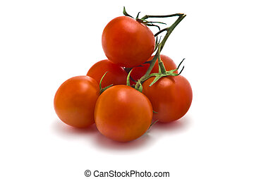 cherry tomatoes - sprig of of ripe, juicy cherry tomatoes on...