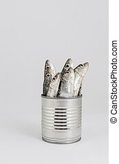 preserved or fresh food - fresh fishes, sardine, in tin can...