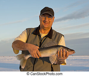 Walleye - Large Minnesota Walleye caught ice fishing