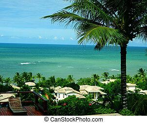 Praia de Mucug - A praia de Mucuge fica localizada em...