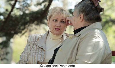 Senior Female Friends - Two senior women talking lively in...